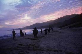 City of Angels beach scene
