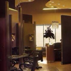 Salon V